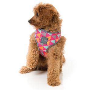 FuzzYard Crush Dog Harness - Large